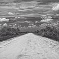 Wagon Wheel Road Bw by Rudy Umans
