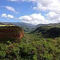Waimea Canyon Kauai by David J Pratt
