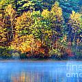 Walden Pond by Denis Tangney Jr