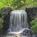 Water Fall Moore State Park by Michael Saunders