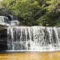 Wentworth Falls Blue Mountains by Tim Hester