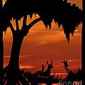 Wetland Wildlife - Sunset Sky by Al Powell Photography USA
