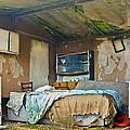 Where Do They Sleep Now by Tony Reddington