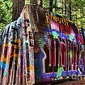 Whistler Train Wreck Box Car by Adam Jewell