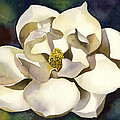 White Magnolia With Blues by Alfred Ng