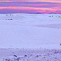 White Sands New Mexico by Bob Pardue