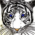 White Tiger by Justin Moore