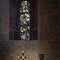Window by Inge Riis McDonald
