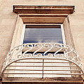 Window by Svetlana Sewell
