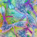 Wings by Teresa Ascone