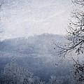 Winter Landscape by Melinda Fawver