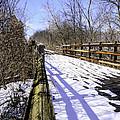 Winter On Macomb Orchard Trail by LeeAnn McLaneGoetz McLaneGoetzStudioLLCcom