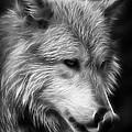 Wolf Eyes by Athena Mckinzie