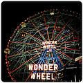 Wonder Wheel by Natasha Marco