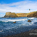 Yaquina Lighthouse On Top Of Rocky Beach by Jamie Pham