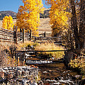 Yellowstone Institute In Lamar Valley In Yellowstone National Park by Fred Stearns