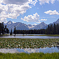 Yellowstone by Joseph Madison