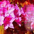 Zephaniah 3 17 by Michelle Greene Wheeler