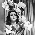 Ziegfeld Girl, Hedy Lamarr, 1941 by Everett