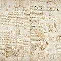Notes By Leonardo Da Vinci, Codex Arundel by British Library