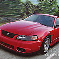 2001 Ford Mustang Cobra by Paul Kuras