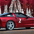 2008 Corvette by Sylvia Thornton