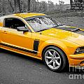 2008 Ford Mustang Rausch Supercharged by Chuck Spang
