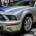 2008 Ford Mustang Shelby by Michael Gordon
