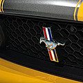 2012 Ford Mustang Boss 302 by Gordon Dean II