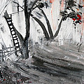 2013 058 Tree And Ladder Alexandria Virginia Silver Black White Red by Alyse Radenovic