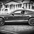 2013 Ford Mustang Shelby Gt 500 Bw by Rich Franco
