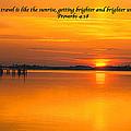 2014 02 25 03 Proverbs 4 18 by Mark Olshefski