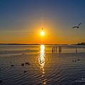 2014 03 02 01 Ft Walton Beach Fl by Mark Olshefski