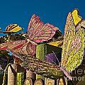2015 Rose Parade Float Of Butterflies 15rp045 by Howard Stapleton