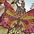2015 Rose Parade Float With Butterflies 15rp043 by Howard Stapleton