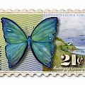 21 Cent Butterfly Stamp by Amy Kirkpatrick