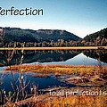 21042 Perfection 2 by Jerry Sodorff