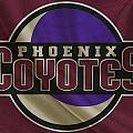 Phoenix Coyotes by Joe Hamilton