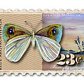 23 Cent Butterfly Stamp by Amy Kirkpatrick