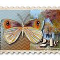 24 Cent Butterfly Stamp by Amy Kirkpatrick