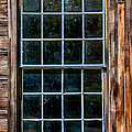 24 Panes by Guy Whiteley