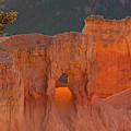 Usa, Utah, Bryce Canyon National Park by Jaynes Gallery