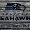 SEATTLE SEAHAWKS by Joe Hamilton