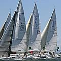 Sf Bay Sailing by Steven Lapkin