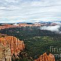 251p Bryce Canyon by NightVisions