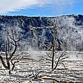 Yellowstone by Image Takers Photography LLC