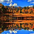 Autumn Splender by Mark Smith