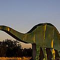 2d Brontosaurus by Angus Hooper Iii