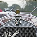 1931 Alfa Romeo by Jack R Perry