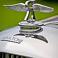 1937 Railton Rippon Brothers Special Limousine Hood Ornament by Jill Reger